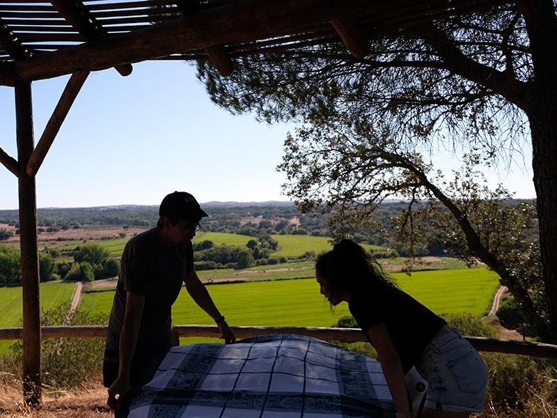 preparing_picnic_800x600